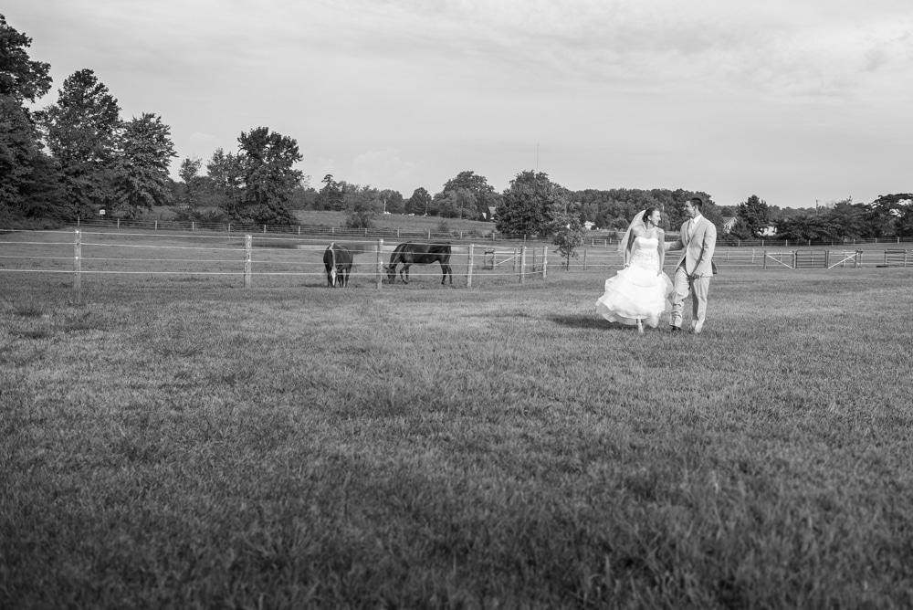 best wedding photographers nj