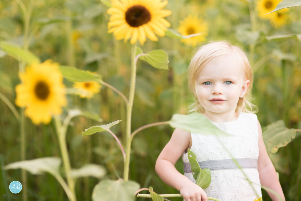 top family photographers in south jersey