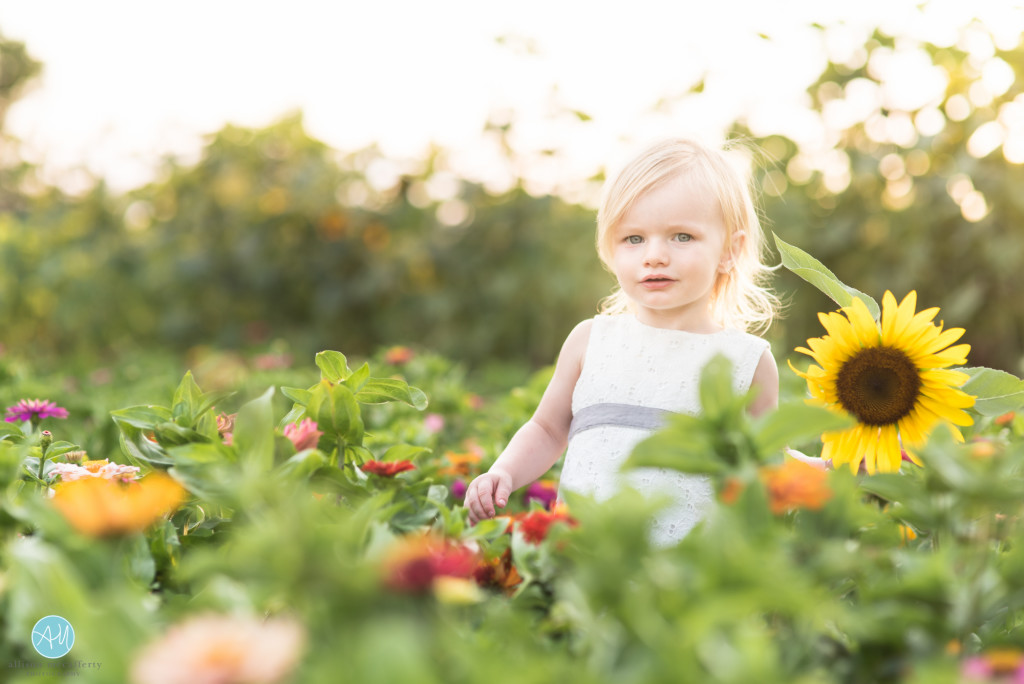 best family photographer south jersey